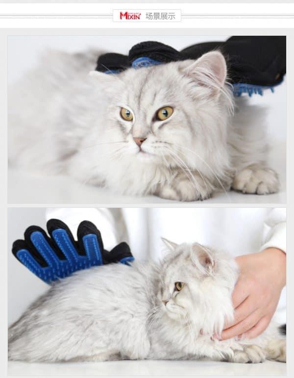 สั่งของจากจีน ถุงมือแปรงขนแมว ประโยชน์ที่มากกว่าการแปรงขน  สั่งของจากจีน ถุงมือแปรงขนแมว ประโยชน์ที่มากกว่าการแปรงขน TB2nrTmcTIlyKJjSZFrXXXn2VXa 2362626108 600x771