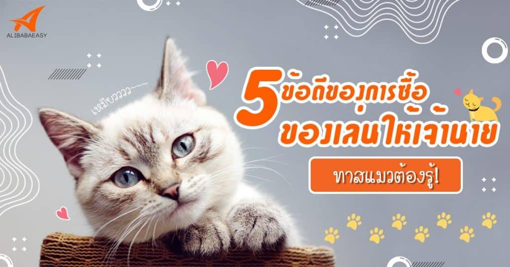 พรีออเดอร์จีน CAT'S TOYS พรีออเดอร์จีน พรีออเดอร์จีน 5 ข้อดีของการซื้อของเล่นให้เจ้านาย ทาสแมวต้องรู้ ! toys cat 1024x536
