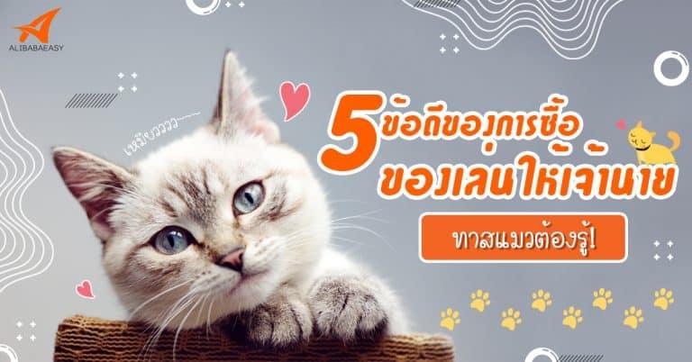 พรีออเดอร์จีน CAT'S TOYS พรีออเดอร์จีน พรีออเดอร์จีน 5 ข้อดีของการซื้อของเล่นให้เจ้านาย ทาสแมวต้องรู้ ! toys cat 768x402